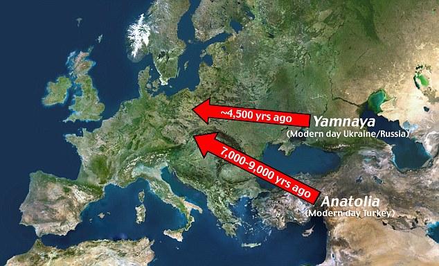 Anadolu ve Rusya'nın batısından Avrupa'ya yapılan göç. [Daily Mail]