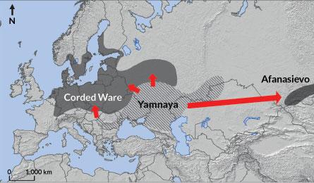 Kuzey Avrupa Yamnaya'nın kısmen yayıldığı bölgeyi temsil ediyor. [Sciencenews]