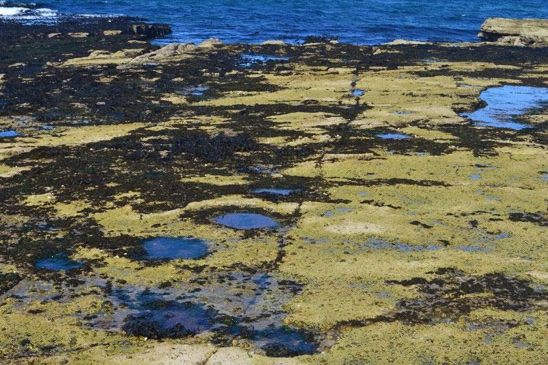 lagoon_scotland02