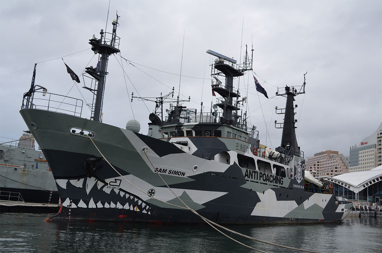 Sea Shepherd'ın gemilerinden MY Sam Simon.