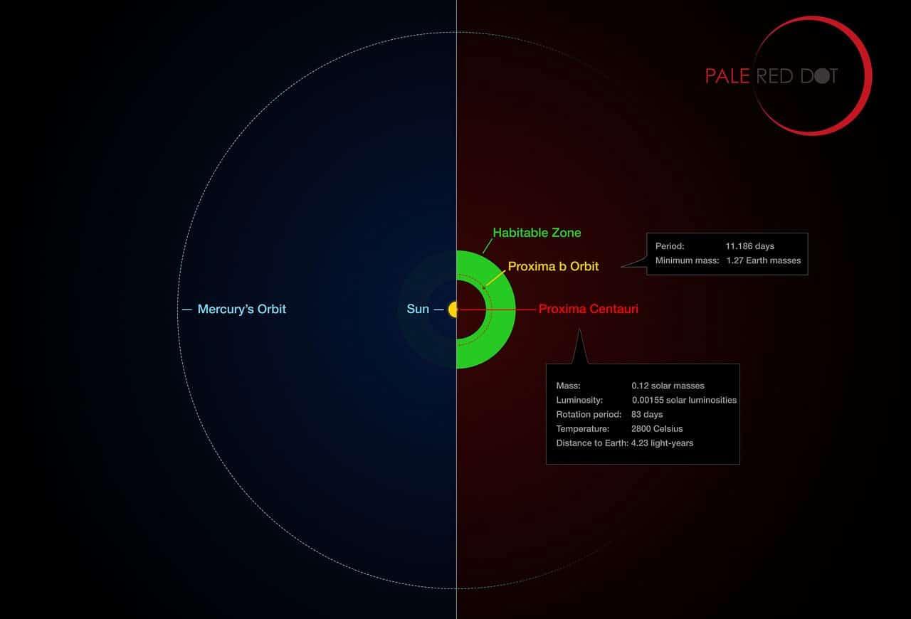 Proxima b yörüngesi ile Güneş Sistemi'ndeki aynı bölgenin karşılaştırılması. [ESO/M. Kornmesser/G. Coleman]